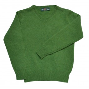 Alan Paine Watercress Lambswool V Neck Jumper