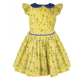 Little Lord & Lady Betsy Hyde Park Print Dress